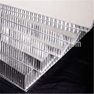 2016 High Quality Aluminium Honeycomb Panel (HR55) pictures & photos