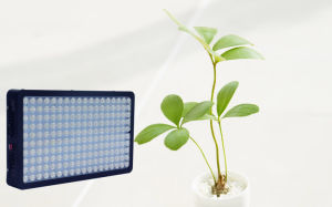 Horticulture 900watt LED Grow Light for Indoor Plant Growing pictures & photos
