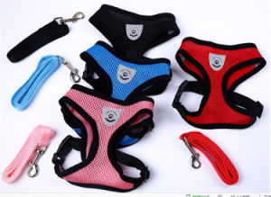 China Factory Stocked Pet Products Air Mesh Dog Harness and Leash Set pictures & photos