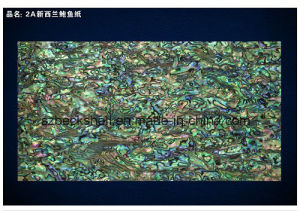 AA Grade New Zealand Abalone Shell Sheet/Shell Paper pictures & photos
