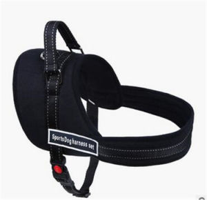 Dog Harness Pet pictures & photos