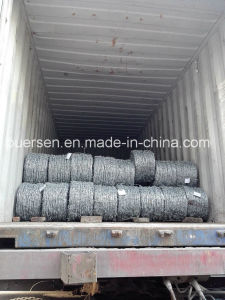 2mm Barbed Wire for Security pictures & photos