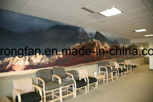 Latest Fashionable Free Design High Quality Vinyl Wall Murals Printing pictures & photos