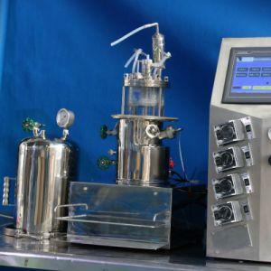 3 Liters in-Situ Sterilisable Glass Fermenter (vertical) pictures & photos