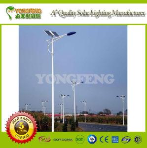 8m 60W LED Lamp Solar Street Light