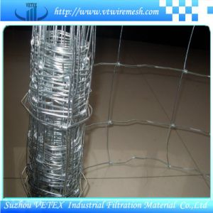 Grassland Wire Mesh Fence Netting pictures & photos