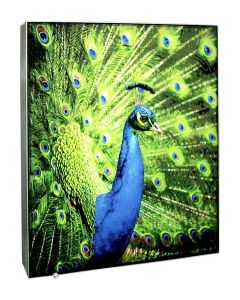 Tension Fabric LED Light Boxes pictures & photos