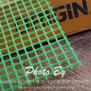 Extruded PE Plastic Mesh Netting pictures & photos