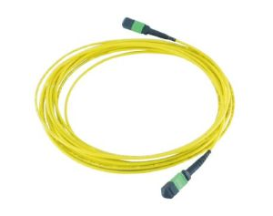 Optical Fiber Cable MPO for High Density Ru pictures & photos