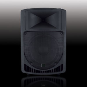Stage Speaker Box PS-2315 pictures & photos