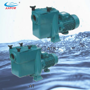 Self-Priming Centrifugal Pool Pumps with Built-in Strainer pictures & photos