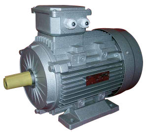 Ie2 (CE) Ms 3-Phase Induction Motor (MS-112M-2) pictures & photos