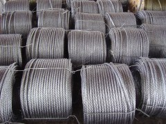 Steel Wire Ropes (6X19S(W)+FC) pictures & photos