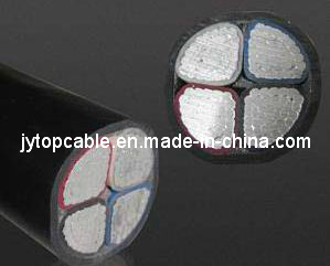 LV 0.6/1kv Aluminum Conductor XLPE Insulated Power Cable pictures & photos