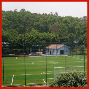 Soft Synthetic Grass for Soccer Ground (50S15Y15G1)