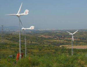 Morshine 1kw Horizontal Axis Pitch Control Wind Turbine
