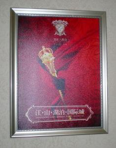 Picture Frame (DSCN0841)