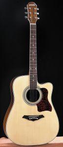 Acoustic Guitar (GW357)