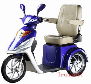 CE Electric Trike (AG-01)