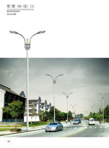 2013 New Street Light OEM