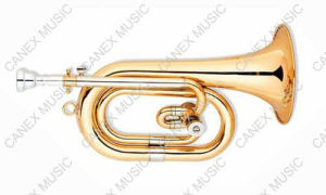 Spanish Horn (CTR-700L) / Brass Instrument Horn pictures & photos