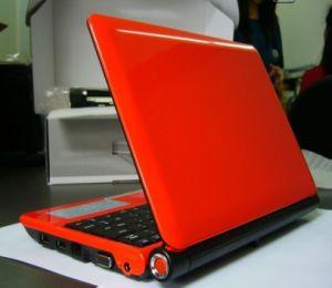"""10""""Laptop With Intel Atom N450 1.66g, 533MHz Fsb, Windows 7/2000/XP, 1GB DDR2"""