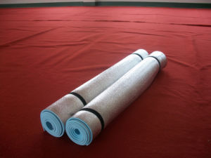 Outdoor Mat, EVA Foam Mat, Yoga Mat, EVA Mat with Aluminium Foil pictures & photos