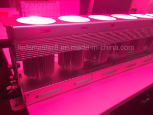 600W RGB LED Light Waterproof 5-Year Warranty pictures & photos