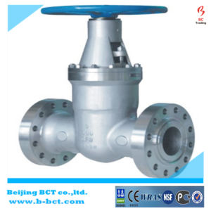 Flange Type API Wcb Gate Valve with Gear Worm BCT-WGV-01 pictures & photos