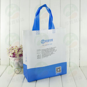 3D Non Woven Fashion Bag with PS Coating (MY-062) pictures & photos