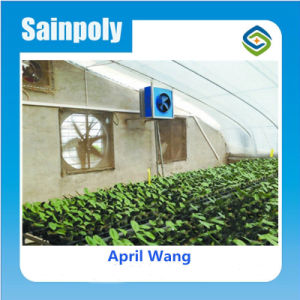 Low Cost Agricultural Solar Greenhouse for Sale pictures & photos