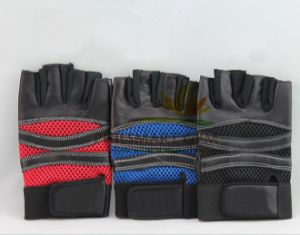 Fitness Training Gloves for Men and Women (PHH-990029) pictures & photos