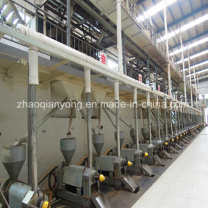 50-100td Tung Seeds, Jatropha Seeds, Shea Nut Cooking Oil Pressing Plant pictures & photos