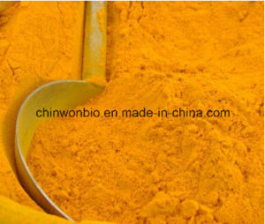 13. Turmeric Extract Powder Curcumin 95% pictures & photos
