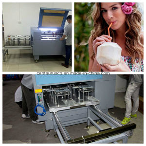 Stailess Steel Coconut Laser Cutting Machine with Best Price