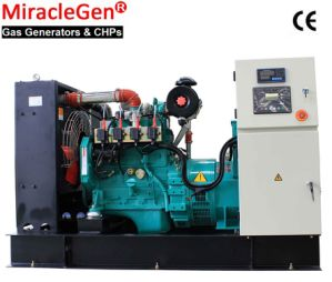 Natural Gas Generator 10-800kw (MS, MC, MT)