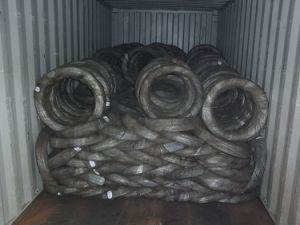 Bwg10 to Bwg22 Factory Price Electro Galvanized Iron Wire