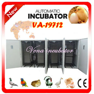 Complete Hatchery of Digital Quail Egg Industrial Incubator for Hatching (VA-19712) pictures & photos
