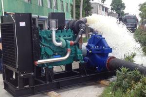 50Hz Googol Natural Gas Fuel Water Pump Generator pictures & photos