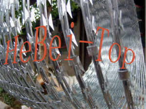 Razor Wire (Prevent Corrosion)