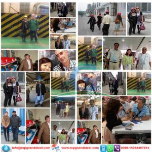 113 11 Lamina De Acero Galvanizado Sin Alear Pintada En Bobina pictures & photos
