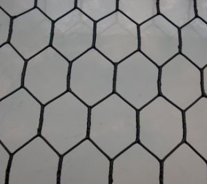 Hexagonal Netting for Temporary Fence pictures & photos