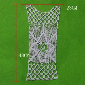 Embroidery Cotton Lace with Eyelet Qppliques (cn87) pictures & photos