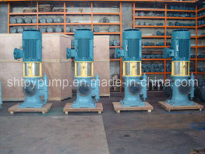 Vertical Three Screw Pump pictures & photos
