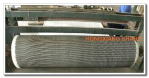 Tri-Dimension Composite Geonet for Drainage of Landfill pictures & photos