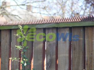 Lawn Yard Outdoor Fence and Wall Spikes pictures & photos