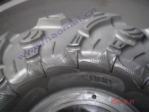 ATV Tyre Mould / Tire Mold pictures & photos