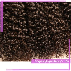 Wholesale 100% Real Remy Natural Human Hair Extensions pictures & photos