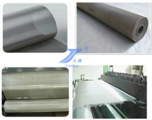 Stainless Steel Wire Mesh (TS-W114) pictures & photos