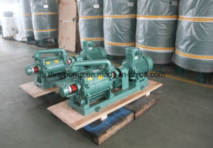 Dve Water-Ring Vacuum Evaporation Pump pictures & photos